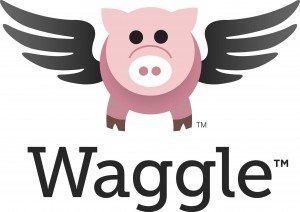 Waggle from Triumph Learning: Online Practice and Instruction