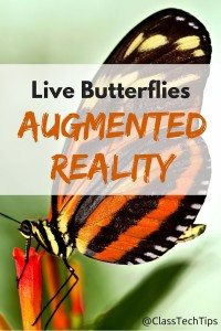 Live Butterflies Augmented Reality Experience-min