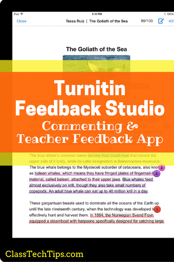 Can teachers use turnitin.com for websites?